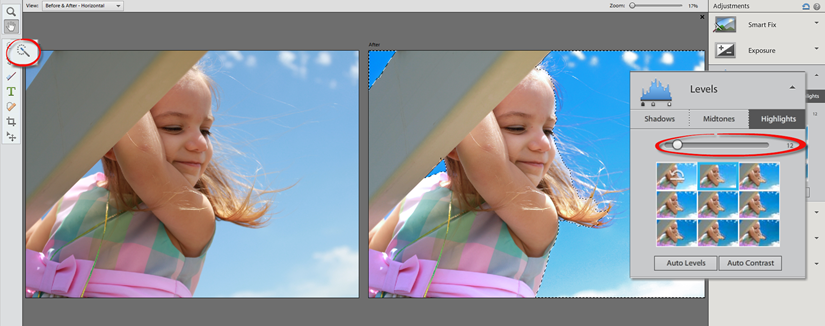 Photoshop Elements 12 Quick Color Adjustment with Selection Tool