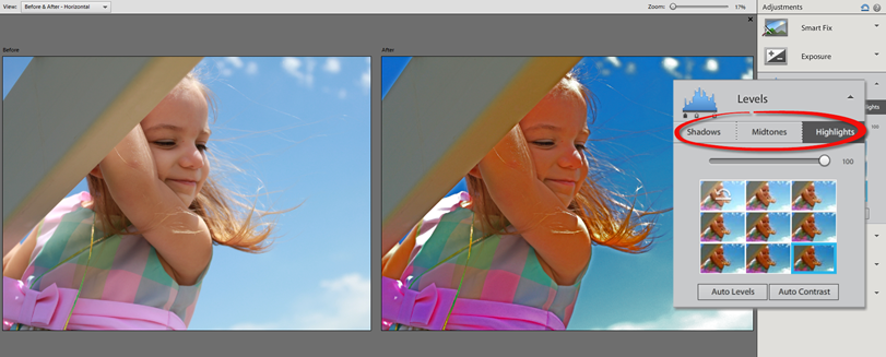 Photoshop Elements 12 Quick Levels Adjustment