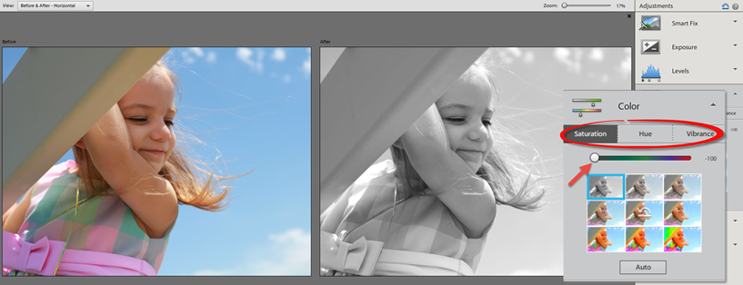 Photoshop Elements 12 Quick Color Adjustment