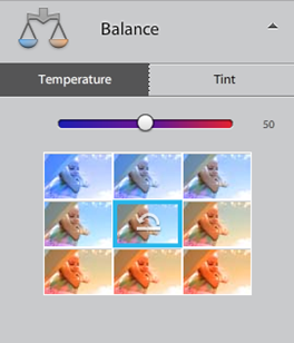 Photoshop Elements 12 Quick Balance Adjustment Panel