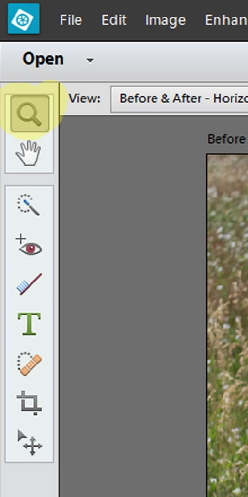 Magnifying glass on left panel in PSE Quick edits screen