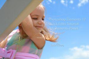 Photoshop Elemenst 12 Quick Edits Tutorial Adjustments Panel