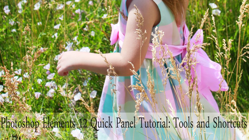 Photoshop Elements 12 Quick Panel Tutorial Tools and Shortcuts