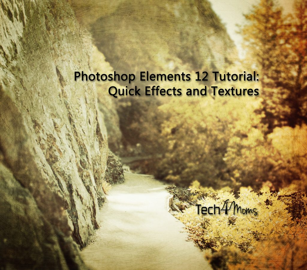 Photoshop Elements 12 Tutorial Quick Effects and Textures