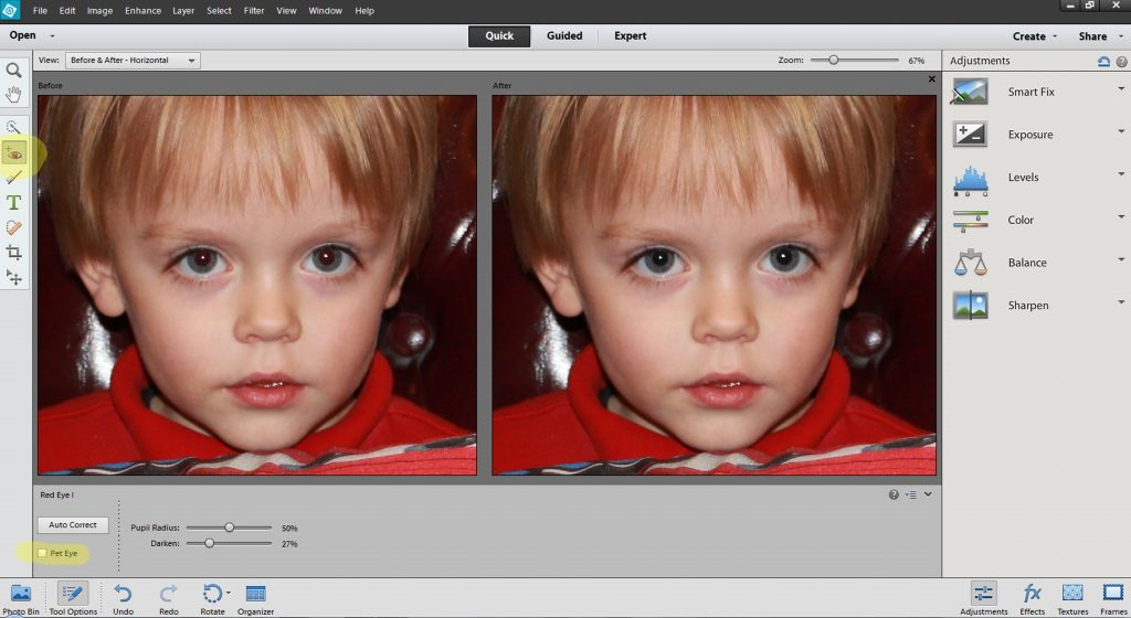 Red Eye Removal tool Photoshop Elements 12