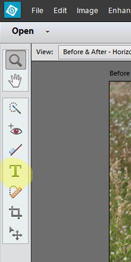 To add words on your pictures use the Text tool