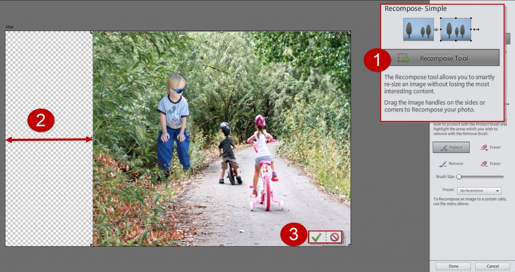 2 Recompose Simple Photoshop Elements 12