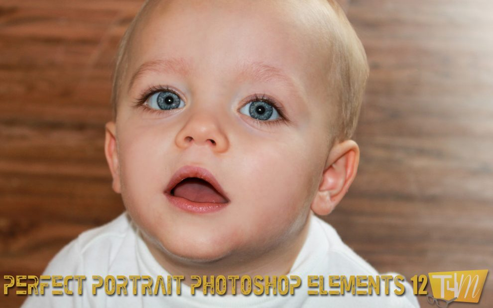 Perfect Portrait Guided Mode PSE 12