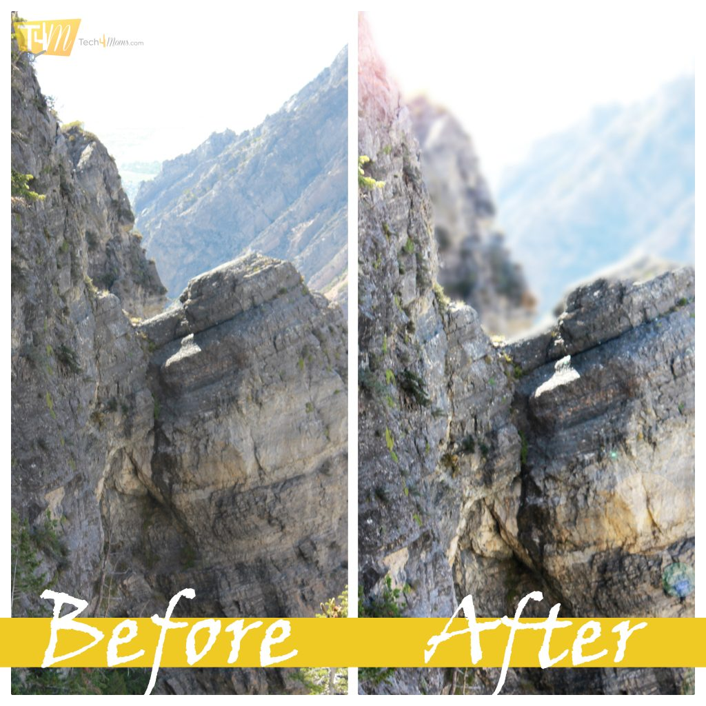 Before and After Depth of Field Effect PSE 12