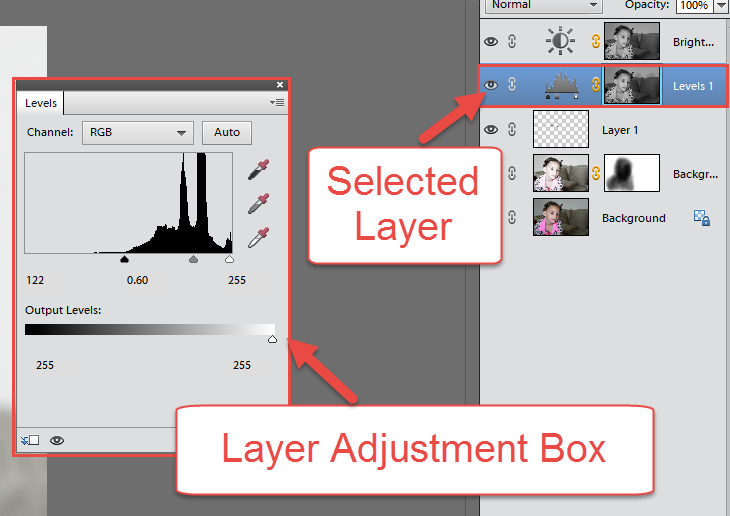 PSE Adjustment Layers Box